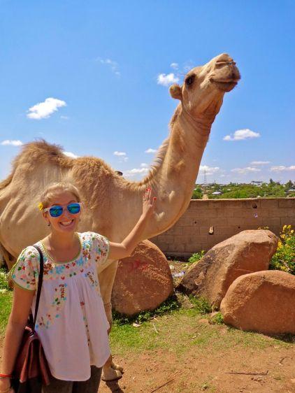Hello Camel!