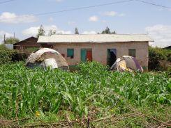 Domed Harari Huts