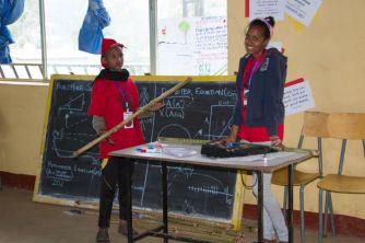 Biltmore Sticks at Community Fair